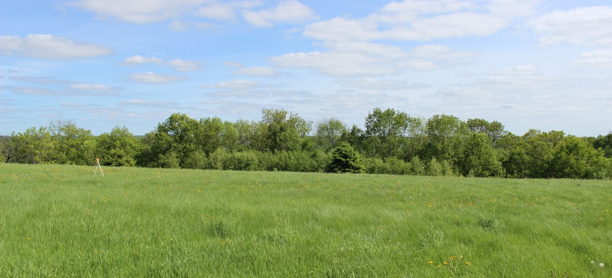 Willow Heights - Lot 12